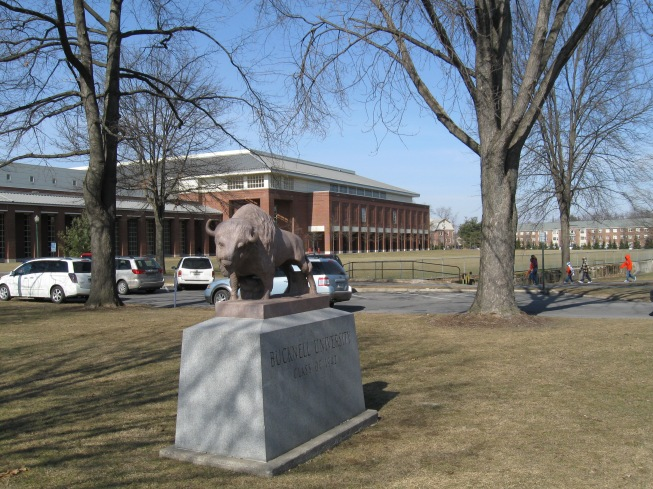 Sojka Pavilion Exterior